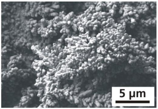 Fig. 6c
