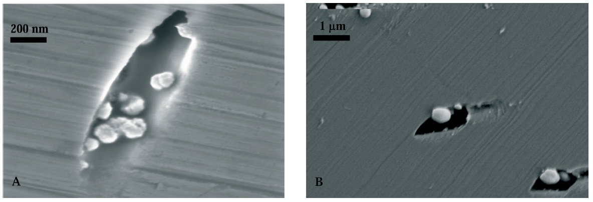Fig. 3: Gold deposits obtained in rhenium pores by application...