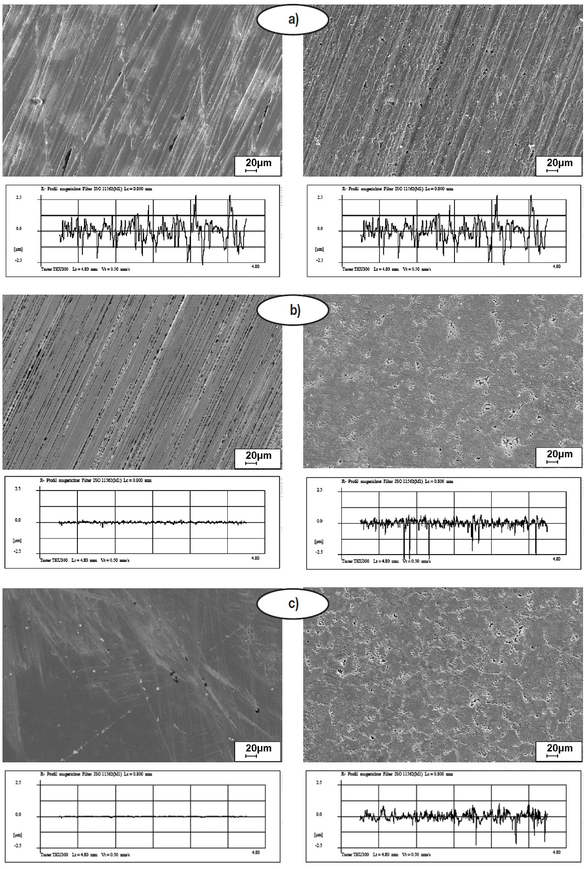 Fig. 3: Influence of the surface roughness on the morphology of the zinc calcium...