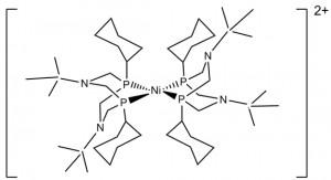 Scheme 1: Schematic presentation of Ni(PCy2Nt-Bu2)22+