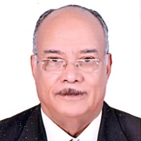 Prof. Refat Moustafa Hassan Abou-Zied