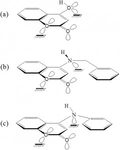 Fig. 9: Selected representation of the mode of adsorption of the tested derivatives.