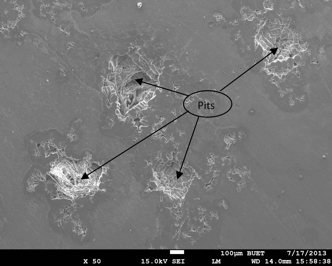 Fig. 5: SEM images show the damage surface morphology of Alloy-1 in NaCl solution
