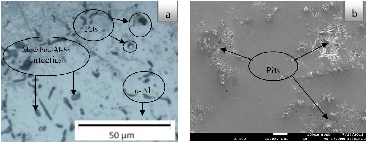Fig. 6: (a) OLM and (b) SEM images show the damage surface morphology of as-corroded Al-6Si-0.5Mg-0.5Cu alloy in simulated seawater