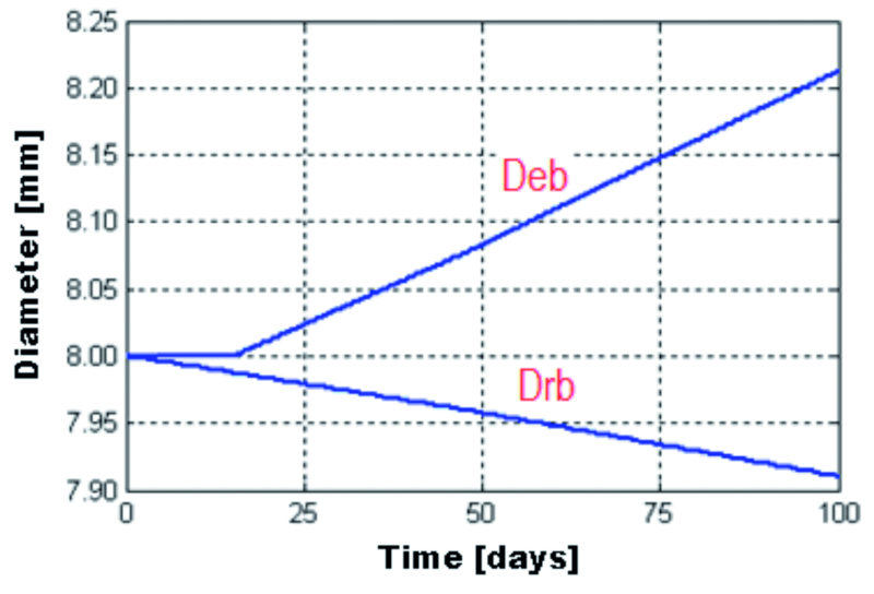 Fig. 16: Evolution of the steel reinforcement diameter and the rust expansion front diameter, 2 mm from the top end of the beam
