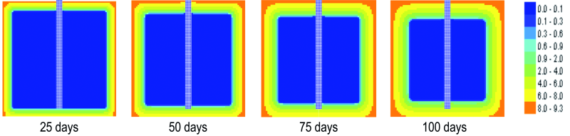 Fig. 7: Distribution of the chlorine content in the central section of the cubic reinforced concrete sample, for t = 25 days, 50 days, 75 days and 100 days since immersion in 3 % NaCl solution