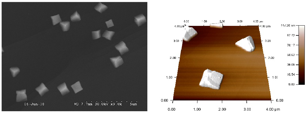 Fig. 8: SEM and AFM images of copper pulsed electrodeposited from 2 mM on HOPG at –0.1 V Ag/AgCl for 5 ms and –0.055 Ag/AgCl for 600 s