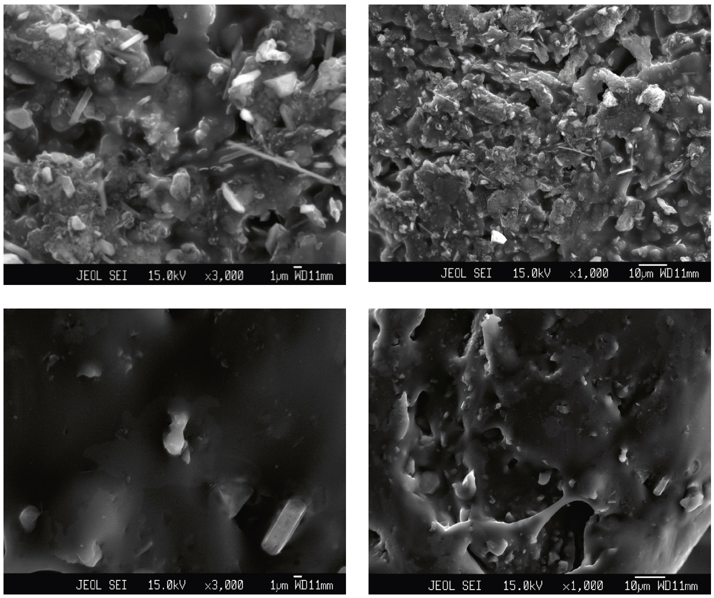 Fig. 7: SEM images of the poly-co-thio- Ani (7a) and poly-thio-co-o-toluidine (7b) with different magnification and cross-section