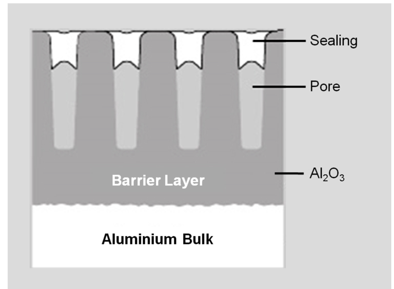Fig. 1: Scheme of the anodising layer [3]