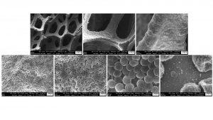 Fig. 3: SEM images of electrodeposited Li on Ni foam at 0.1 mAcm-2 for 1 h